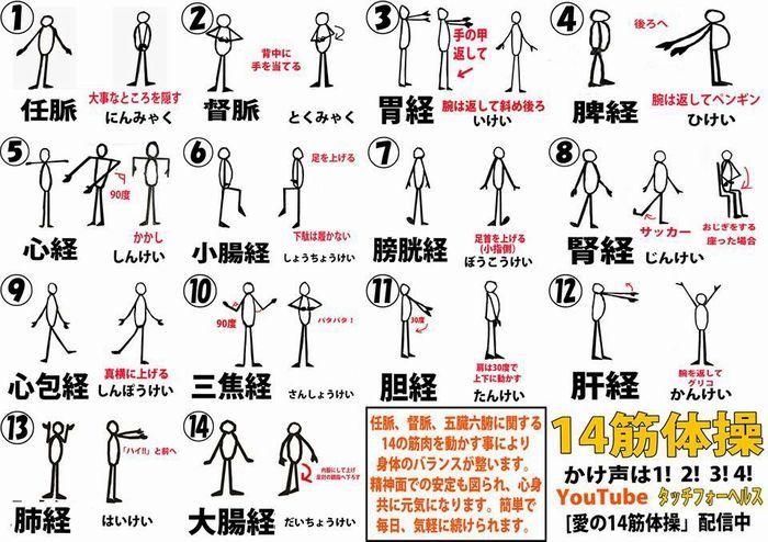 14筋体操